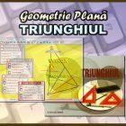 Geometrie Plană - Triunghiul - Eticheta